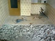 Демонтаж полов,  стен,  зданий и хоз. построек с вывозом